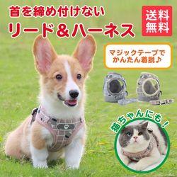 犬 ハーネス 犬用 リードセット お散歩グッズ 胸あて式 小型犬 中型犬 ペット用品 引っ張り防止 ペットリード ドッグリード