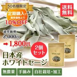 【定期購入】日本産 浄化用ホワイトセージ 枝付き 約10g×2 Japanese white sage