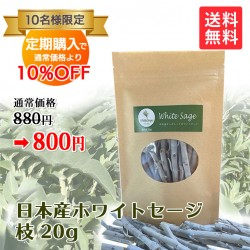 【定期購入】日本産 浄化用ホワイトセージ 枝のみ 約20g Japanese white sage