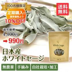 【定期購入】日本産 浄化用ホワイトセージ 枝付き 約10g Japanese white sage