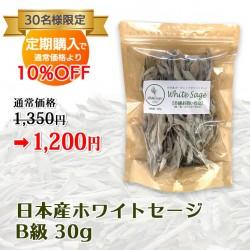 【定期購入】日本産 浄化用ホワイトセージ B級 約30g Japanese white sage