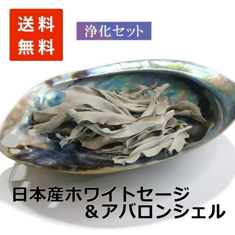 浄化セット12 [無農薬・限定数]日本産 ホワイトセージ と 天然貝アバロンシェル